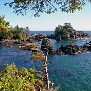 Ucluelet nature tours